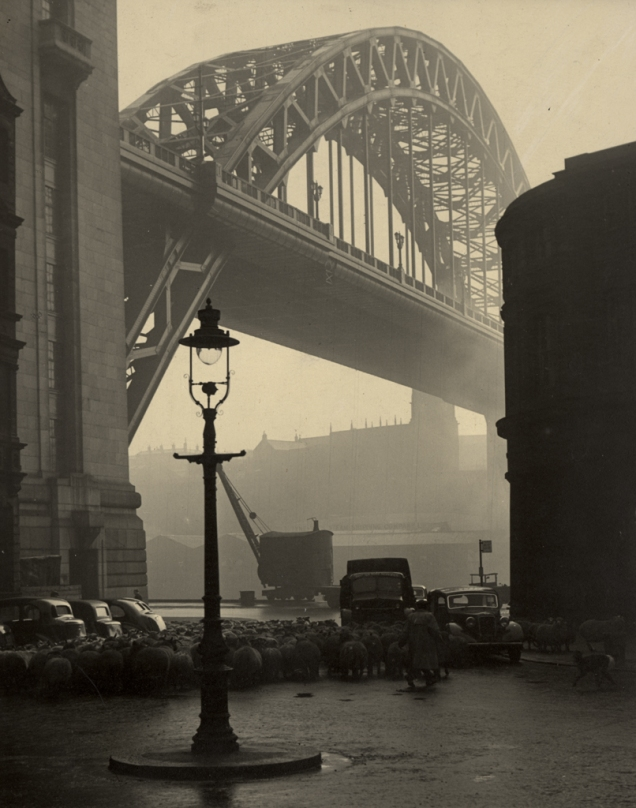 A flock of sheep being shepherded under the Tyne Bridge in the early 20th century. © Newcastle City Libraries.